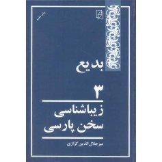 بدیع 3 - زیباشناسی سخن پارسی