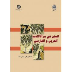 البيان في مرآة الادب العربي و الفارسي